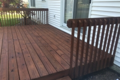 staining Normal Illinois